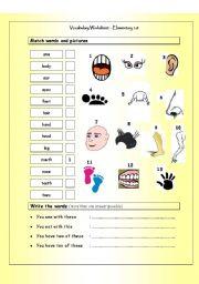 Vocabulary Matching Worksheet - Body Parts (Elementary 1.8)