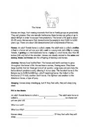 English Worksheets: The horse
