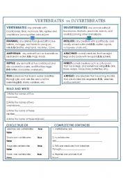 English Worksheet: Vertebrates vs invertebrates