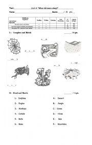 English Worksheet: Animals and Habitats Test