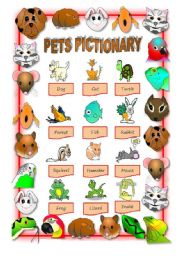 English Worksheets: PETS PICTIONARY