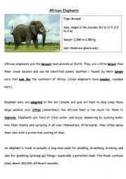 English Worksheets: African Elephants