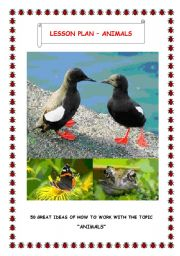 English Worksheet: 50 GREAT IDEAS TO TEACH ANIMALS
