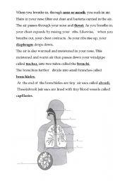 English Worksheets: Respiration tutorial