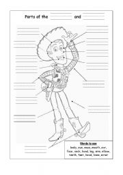English Worksheets: Parts of Body and Face