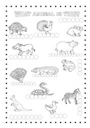English Worksheets: WHAT ANIMAL IS THIS?