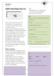 English Worksheets: Spider in boy�s ear