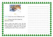 English Worksheets: FoX