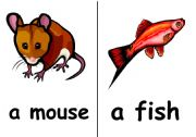 English Worksheets: flashcard animals