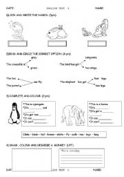 English Worksheets: test on animals a& b 2 pages