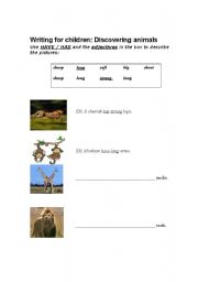 English Worksheets: Discovering animals