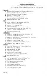 English Worksheets: Animal Classifications