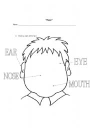 English Worksheets: face II