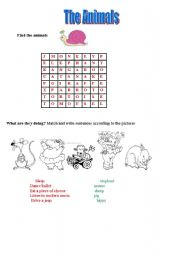 English Worksheets: The animal world