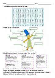 English Worksheets: HUMAN SENSES AND PARTS OF THE BODY