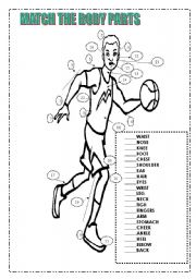 English Worksheet: Match the body parts