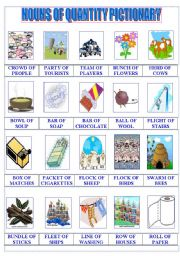 English Worksheet: Nouns of Quantity Pictionary
