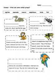English Worksheets: What are some animal groups?