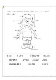 parts of the body printable worksheets for grade 1 human body parts worksheets for. Black Bedroom Furniture Sets. Home Design Ideas