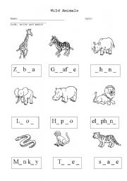 English Worksheets: Wild Animals