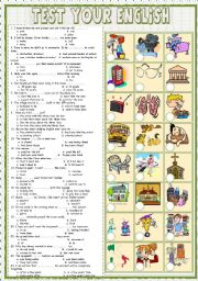English Worksheets: Test  your English 2