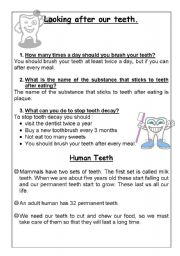 English Worksheets: Looking after our teeth