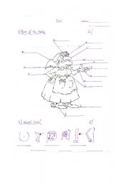 English Worksheets: Bodyparts