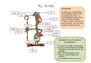 English Worksheets: MY BODY (1/2)