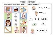 English Worksheets: MY BODY (2/2)