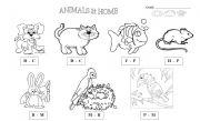 English Worksheets: animals - Pets