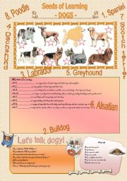 English Worksheets: SEEDS OF LEARNING - Dogs -