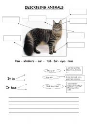 describing animals esl worksheet by idefox. Black Bedroom Furniture Sets. Home Design Ideas