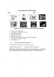 English worksheet: Adverbs of Frequency handout