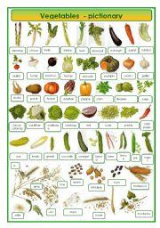 English Worksheet: Vegetables - pictionary
