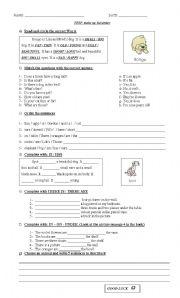 English Worksheets: Animal Descriptions Test