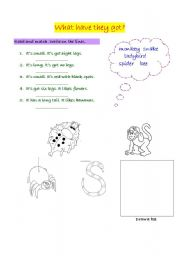 English Worksheets: Animals, read, match and write