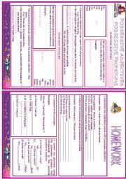 English Worksheet: POSSESSIVE PRONOUNS / POSSESSIVE ADJECTIVES