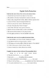 English Worksheets: English Skills Evaluation