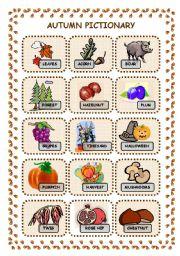 English Worksheet: Autumn pictionary