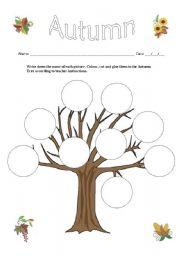 English Worksheet: Autumn Vocabulary Tree