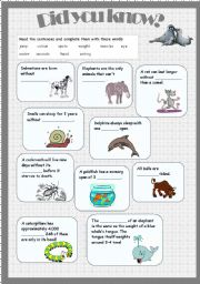 English Worksheets: animal facts2 - did you know?