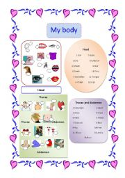 English Worksheets: My Body  and Key