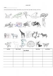 English Worksheets: CLASSIFICATIONS OF ANIMALS 2