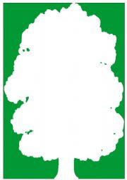 English Worksheets: Tree