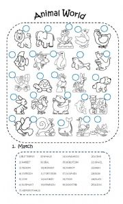 English Worksheets: Animal World (2 PAGES)