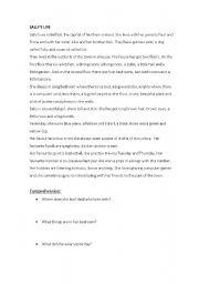 English Worksheets: Sally�s life