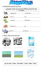 English Worksheet: Vocabulary: Animals  and Habitats