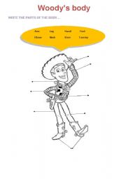 English Worksheets: Woody�s Body