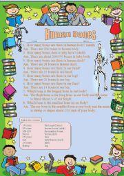 English Worksheet: Human Bones