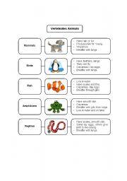 English Worksheets: Vertebrate and Invertebrate Animals
